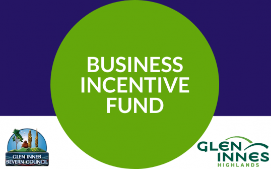 Business&nbsp;<div>Incentive&nbsp;</div><div>Fund</div>--