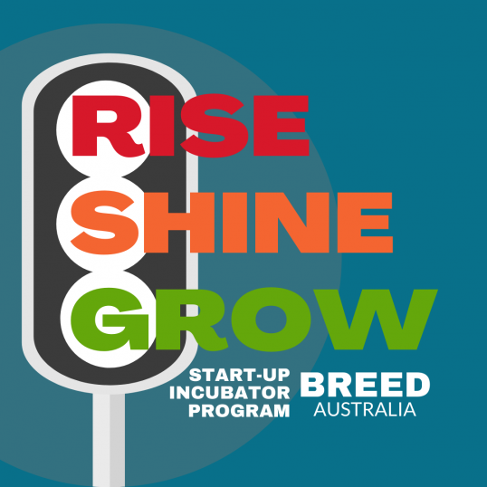 BREED - Start-Up Incubator--